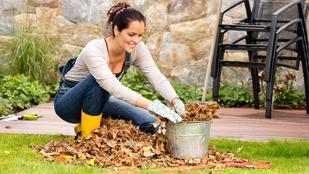 Ne csak a növényeket, az egész kertet téliesítse!