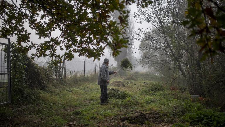 Lengyel aprósüteménnyel hálózzák be áldozataikat az uzsorások