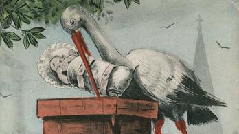 Miért a gólya hozza a csecsemőket?
