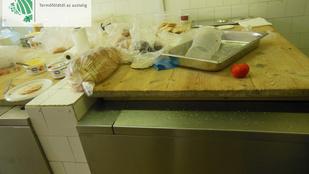 Lejárt húsokból és mosogatóba csepegő szennyvíz mellett főztek a menzákra