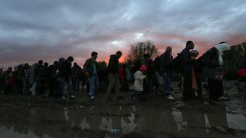 Nem szállítanak több menekültet a magyar határra