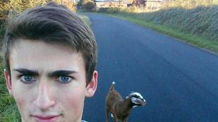 Követte egy kecske, lefotózta, az internet meg kinevette