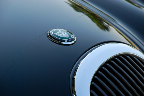 jaguarstype9913