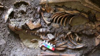 DNS-sel keresik az európai ember ősét