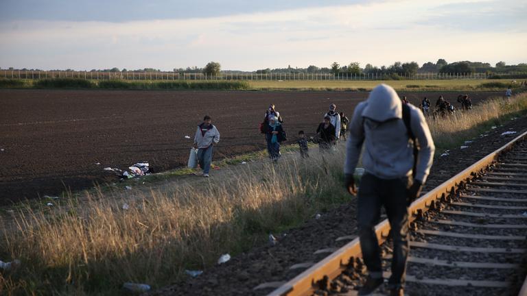 21. századi kalandfilm: Elszöktek Magyarországról, megtaláltuk őket Németországban