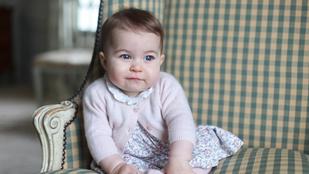 Ki a cukibb: György herceg vagy Sarolta hercegnő?