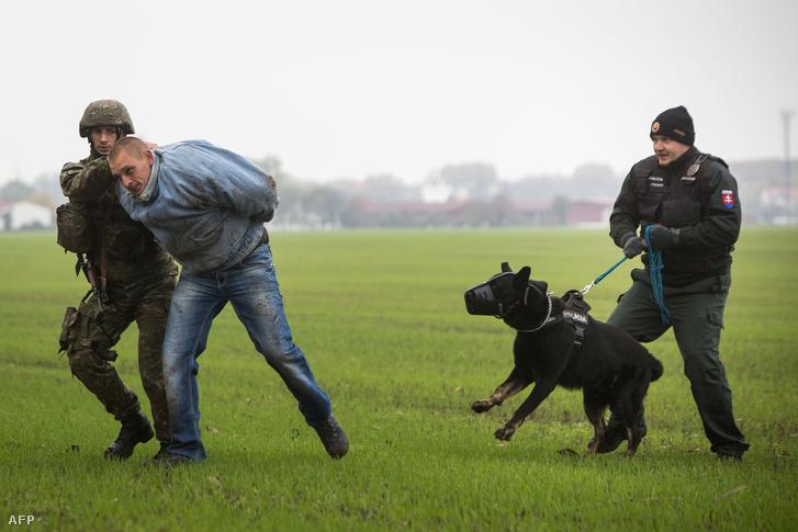 A szlovák rendőrök és katonák közös edzése, ahol az illegális bevándorlók őrizetbe vételét gyakorolták Pozsony mellett október 29-én