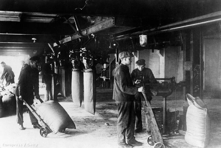 Munkások dolgoznak az oppaui gyárban