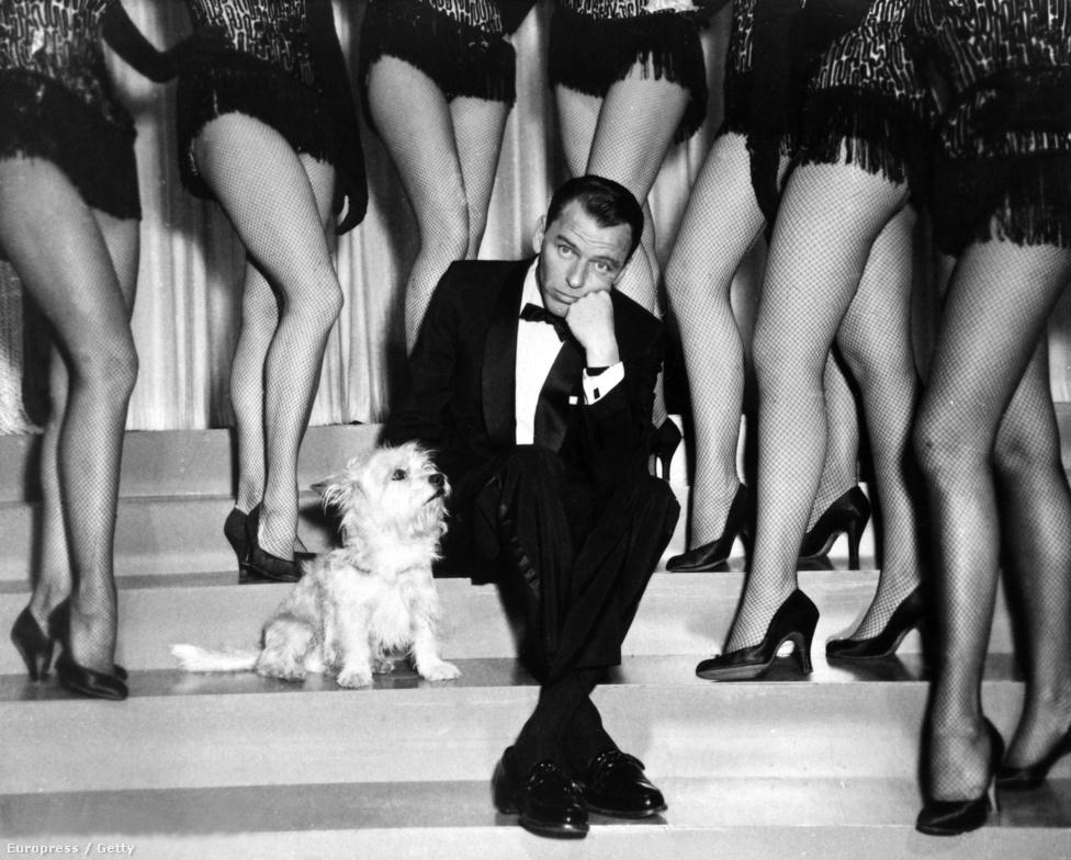 A hírhedt nőcsábászt a nyolcvanas évekre elérte a férfiak egyik legrettegettebb félelme, és viccelődve ugyan, de egyre gyakrabban mesélt a potenciazavarairól. Sinatra egyébként bevallottam rajongott az intelligens nőkért, de arról is mesélt, hogy férfiként nem helyesli, ha egy átbulizott este stírölési versenybe csap át.