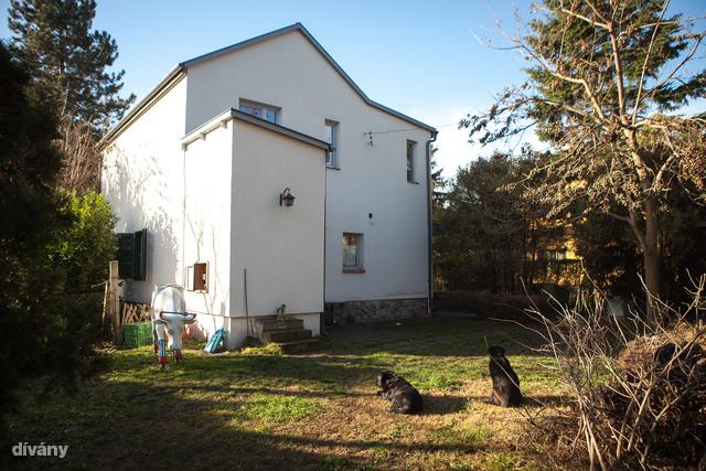 A ház a kapu felől nem mutatja meg magát, nagyon zártnak tűnik.