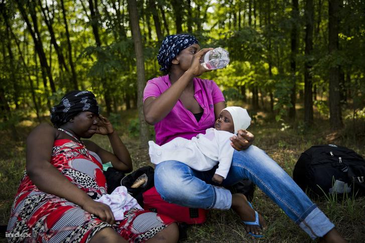 Menekültek Ásotthalomnál augusztus 4-én