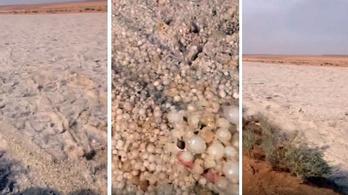 Látott már ilyen brutális homokfolyót?