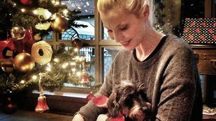 Liluéknál még a kutya is kapott ajándékot
