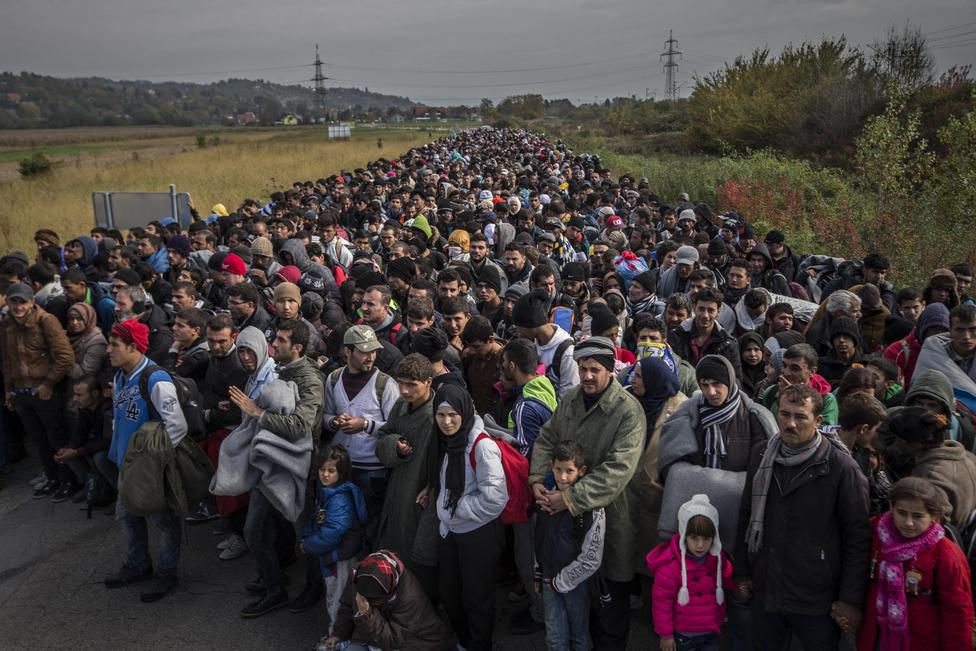 A képet október 23-án készítettem a horvátországból érkező menekültekről, a szlovéniai Dobova és Rigonce települések közötti úton, pár nappal a magyarországi teljes határzár után. A magyar-horvát határszakasz lezárását követően Szlovénia vált a menekültek új tranzitállamává, Horvátországból vonatok szállították a háborúk elől menekülők tömegeit, a ljubjanai kormány pedig buszokkal szállította tovább őket Ausztria irányába. A magyar reakció váratlan és nehéz helyzetbe hozta a szomszédos országokat, a hatóságok nehezen tudták kezelni a menekülthullámot. Naponta legfeljebb 2500 migránst tudtak ekkor elhelyezni Szlovéniában, a kép készítésének hetében pedig 6-8 ezer ember érkezett naponta. A fényképen szereplők is a zöldhatáron át érkeztek Rigoncéba előző este, az éjszakát pedig egy szabadtéri táborban, fagypont közeli hőmérsékleten töltötték a település határában, ahová katonák és rendőrök terelték őket. Másnap kísérték a közeli Dobovába a főként Szíriából és Irakból érkezőket, ekkor készítettem a képet is.A helyi eseményekhez hozzátartozik, hogy az előző napokban többször is előfordult, hogy horvát rendőrök éjszaka nem a zöldhatár folyójának hídjához, hanem a jéghideg vízhez terelték a menekülteket.  Erről az átkelésről több felvétel és videó is nyilvánosságra került, amelyeket követően később már nem fordult elő ilyen eset. Szerintem ez egy kiváló példa arra, hogy a fotóriporterek illeve operatőrök a munkájukkal elérhetnek pozitív változásokat.