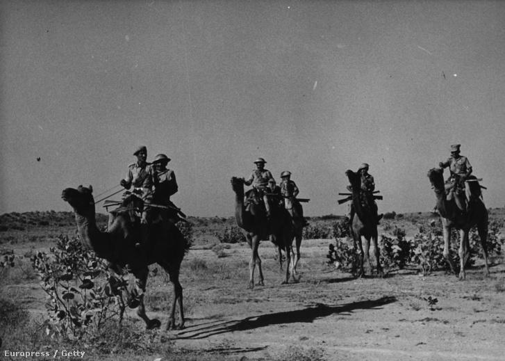 Az RAC tevés alakulata a pakisztáni határnál