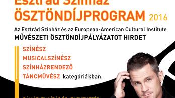 Művészeti ösztöndíjat hirdet az Esztrád Színház
