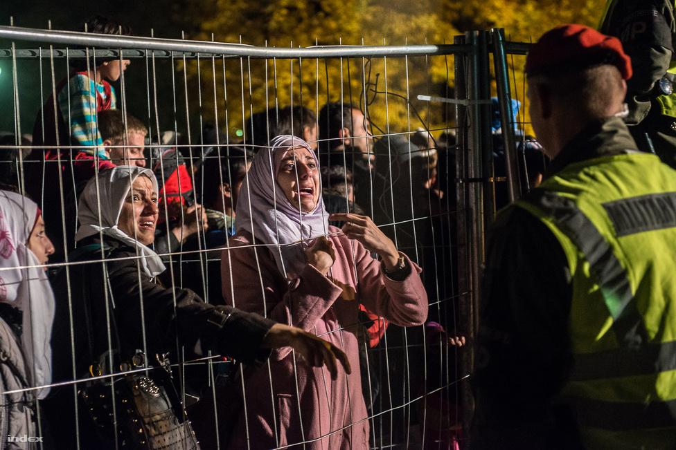 Októberben két angol újságírót kísértem az osztrák-szlovén határhoz, és az egésznapos sofőrködés után estére a két határ közötti senkiföldjén találtam magam egy kerítésnek paszírozva, az ott feltorlódott több száz menekült között.  Az első sorokban komoly tolakodás volt a helyért, még úgy is, hogy út innen tovább nem vezetett. Ezt a rácsok innenső oldalán senki nem tudta, csak egyre feszültebben várták, hogy történjen valami. A felesleges fejetlenségről ez a kép mesél legjobban: a nő gyerekeit a tülekedés miatt átemelte a kerítésen két határőr, és elvitték őket valahova, a szembe világító reflektorokon túl. Senki nem értette, hogy mit történik: a határőrök segíteni akartak, de nem tudtak a nővel kommunikálni, aki így csak annyit élt meg az egészből, hogy elvették tőle a gyerekeit, és fogalma sincs, hová tűntek vagy mi történik velük. Elpattant benne valami, és tehetetlenül rázni kezdte a kerítést. Én is kezdő szülő vagyok, megpróbáltam elképzelni, mi pörögne végig az agyamon egy hasonló helyzetben. Ki tudja, hányszor ismétlődött már meg ez a jelenet ugyanitt vagy hány hasonló dráma játszódott le bárhol az úton Európában? Húsz perccel később megnyitották a kerítést egy másik ponton, és a tömeg zavartalanul átsétálhatott az osztrák oldalra.