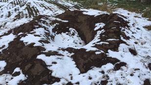 Innen került elő a meggyilkolt nő holtteste a mocsai szántóföldön