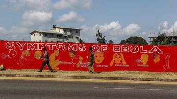 Két ebola-vakcinát jelentett be Putyin