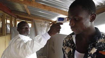 WHO: Vége az ebolajárványnak