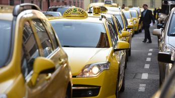Összefogtak a taxisok a hiénák ellen