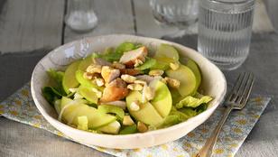 Ezekkel az ételekkel fogyhat: almás-zelleres csirkesaláta