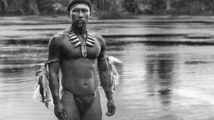 Így tettük tönkre Amazóniát