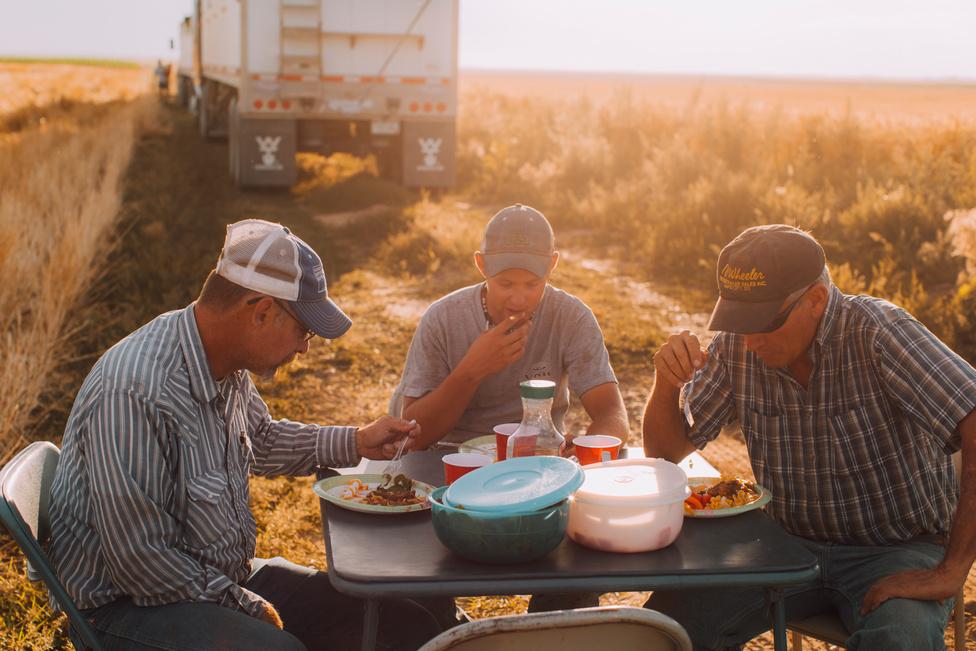 A betakarítás közbeni ebédeket komolyan veszi a család. A tradíció és a büszkeség is egy olyan, nők által készített menüt ír elő, ami egy húsos főételből, kétfajta köretből, desszertből, valamint jeges teából vagy limonádéből áll. A férfiak váltják egymást a műszakokban, hogy folyamatos legyen a munka a mezőn.