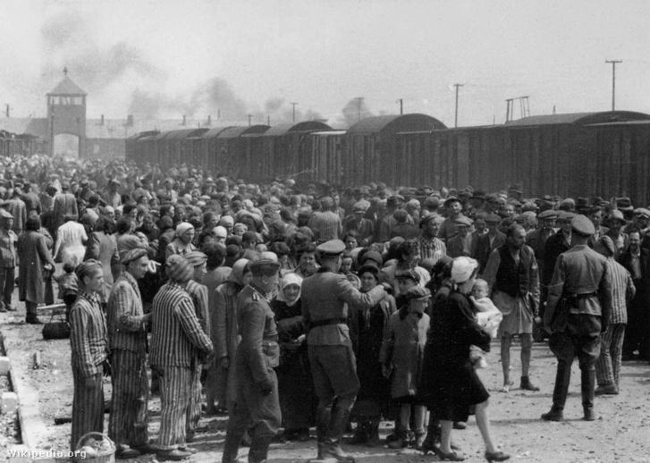 Magyarországról deportált zsidók Auscwitzban megérkezésük után