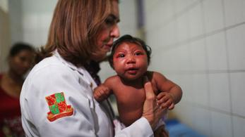 Válságstábot állított fel a WHO a zika miatt