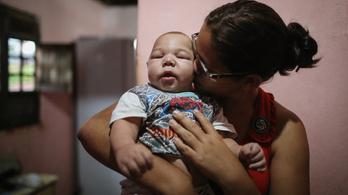 2100 terhes kolumbiai fertőzött zikával