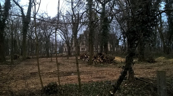 Állítólag fákat vágtak ki a turai kastélyparkban, de nem biztos