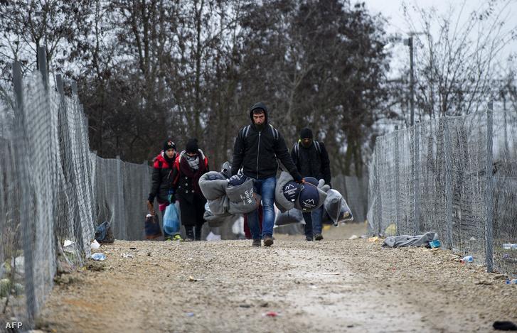 Érkező menekültek a macedón-szerb határnál