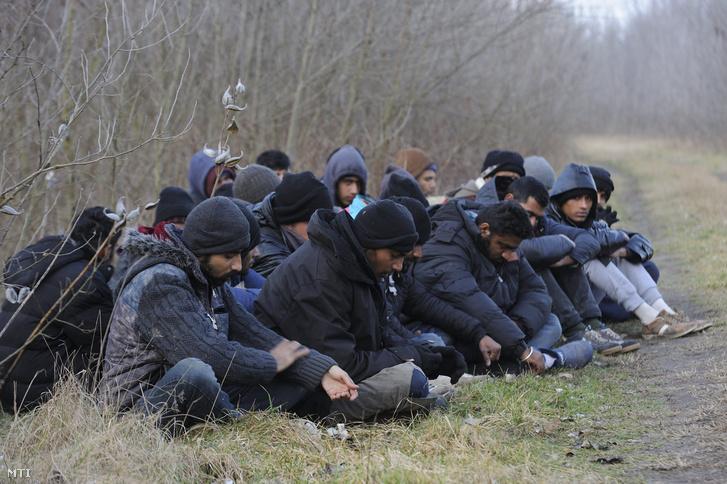 Elfogott menekültek Röszkénél 2016. február 9-én