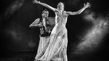 Világok táncai, táncok világa