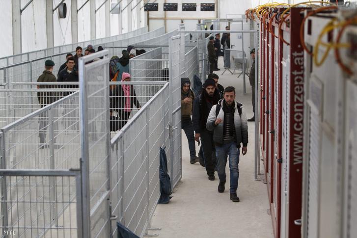 Migránsok az osztrák- szlovén határ ausztriai oldalán a Spielfeldben kialakított a migránsokat irányító határõrizeti rendszer sátrában 2016. február 8-án.
