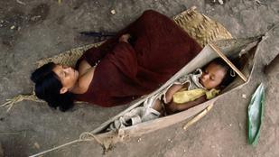 6 meglepő alvási szokás bolygónkon