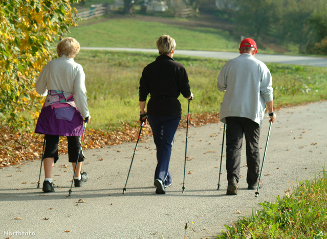 Holisztikus kúra Nordic Walkinggal