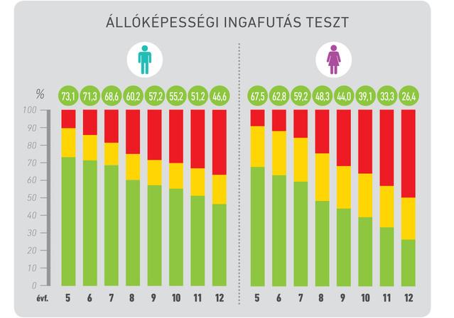 infografika allokepesseg