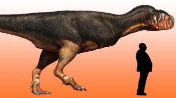A valaha élt legnagyobb ragadozót találhatták meg