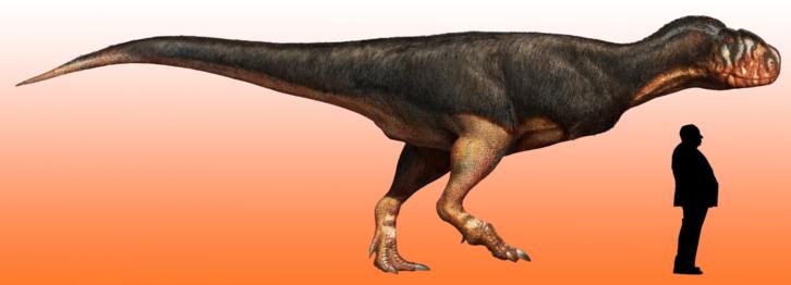 fossilfindre.png