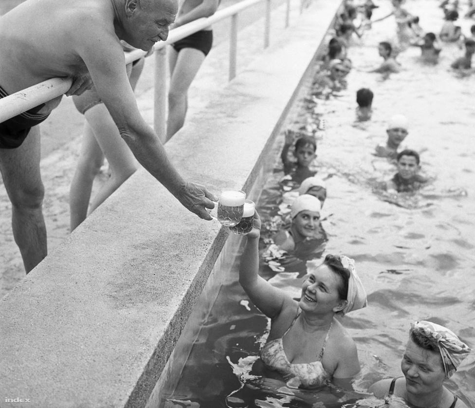 Sör és koccintás a BVSC uszodában, 1960-ból.