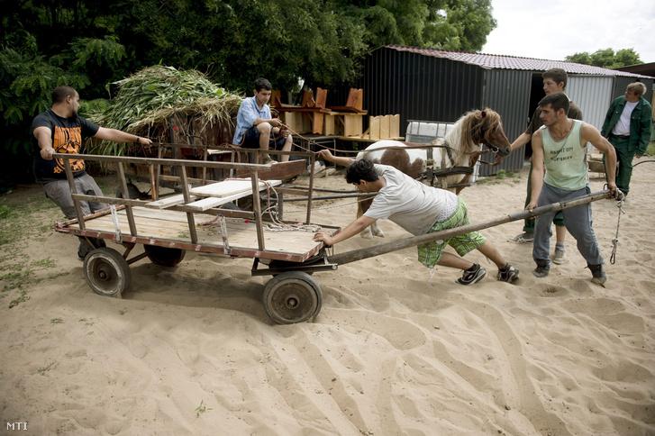 Közmunkások egy szekeret tolnak a plébánia udvarán Nyáregyházán 2015. június 22-én. A Pest megyei település munkanélkülijei a Váci egyházmegye vidékfejlesztési programjában vesznek részt amely tizenkét közmunkással és napi húsz-huszonöt önkéntessel mûködik a helyi plébánián.