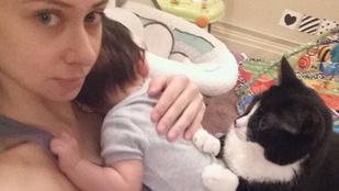 Ez a cica nem hajlandó elhagyni a család új tagját