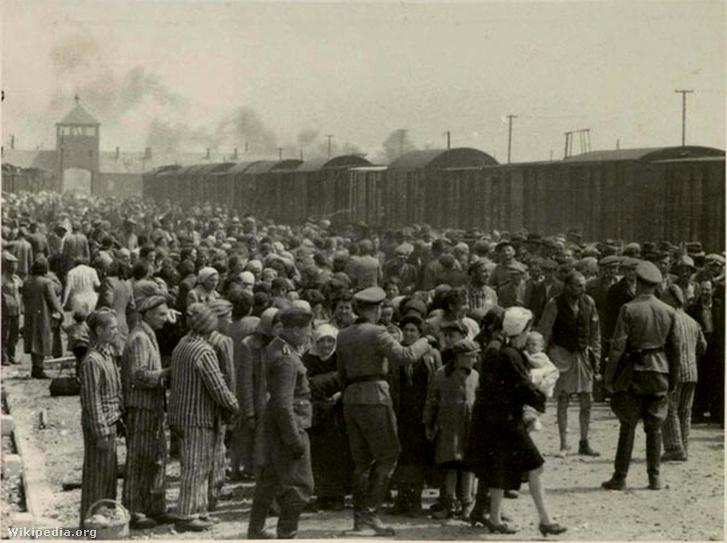 Auschwitzba érkező magyar zsidók a zsidórámpán (vasúti sínpárok között elterülő terület, ahol az SS-orvosok a vagonokból leszálló zsidókat, és egyéb deportáltakat szelektálták), 1944. május.