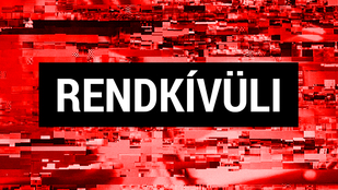 Meggyilkolták a Népligetnél eltűnt 20 éves lányt