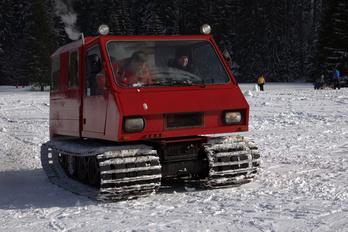 Lavina PL800Z