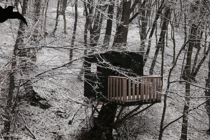 A Pilisben is havazott
