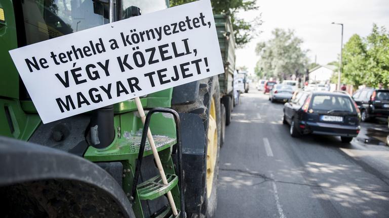 Túl olcsó a tej, bajban a magyar