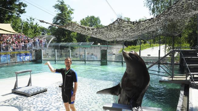 Kétszáz forintért mehet állatkertezni, aki idén ünnepli 20. születésnapját